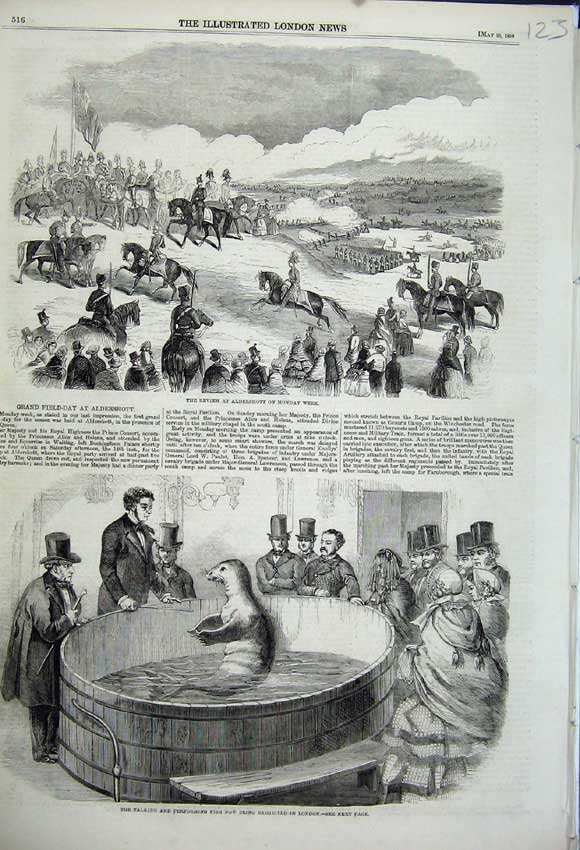Print 1859 Review Aldershot Performing Seal Fish London Men 123N107 Old Original