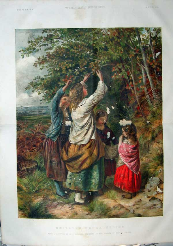 Print 1859 Colour Children Nut-Gathering Tree Cobbett 402Tn107 Old Original