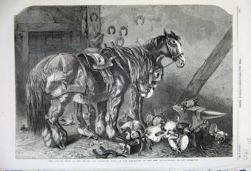 Print 1859 Smithy Horse Shire Pigeons Birds Horse-Shoe Smith 190N108 Old Original