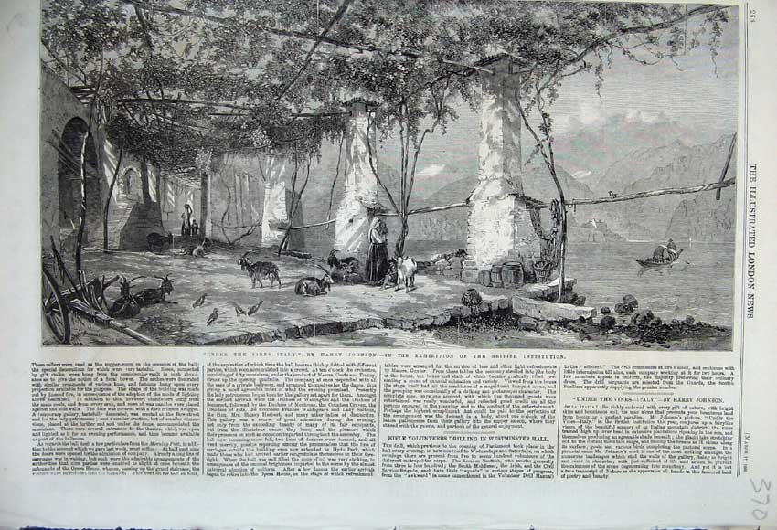 Print 1860 Under The Vines Italy Grapes Wine Making Goat Bird 370N109 Old Original