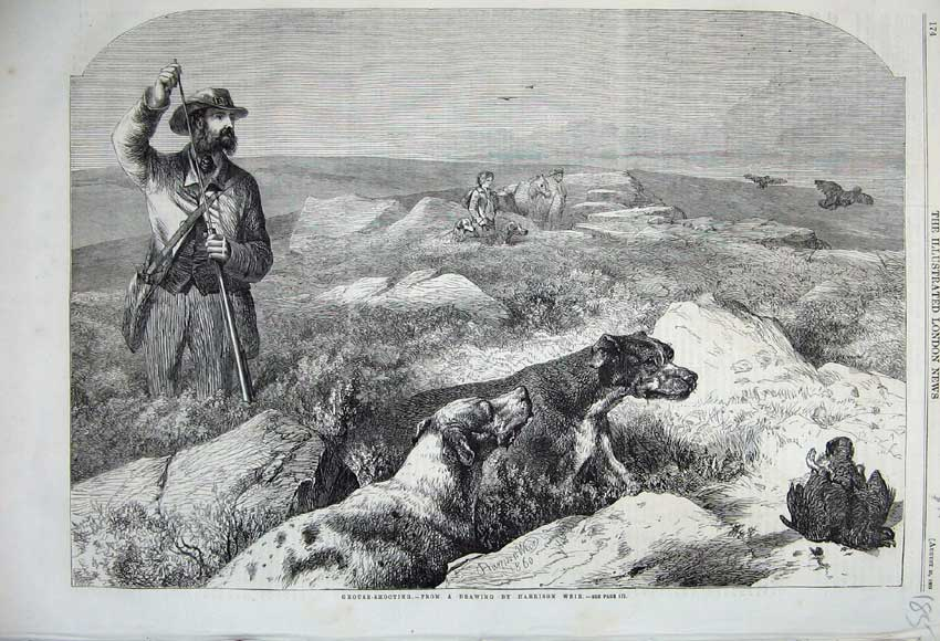 Print 1860 Grouse Shooting Man Rifle Horse Hound Dogs Sport 185N110 Old Original