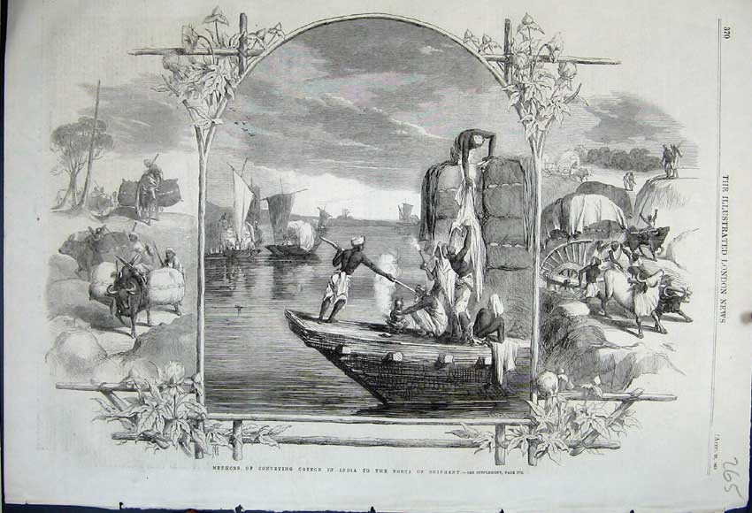 Print 1861 Conveying Cotton India Ports Shipment Boats Cows 265N111 Old Original