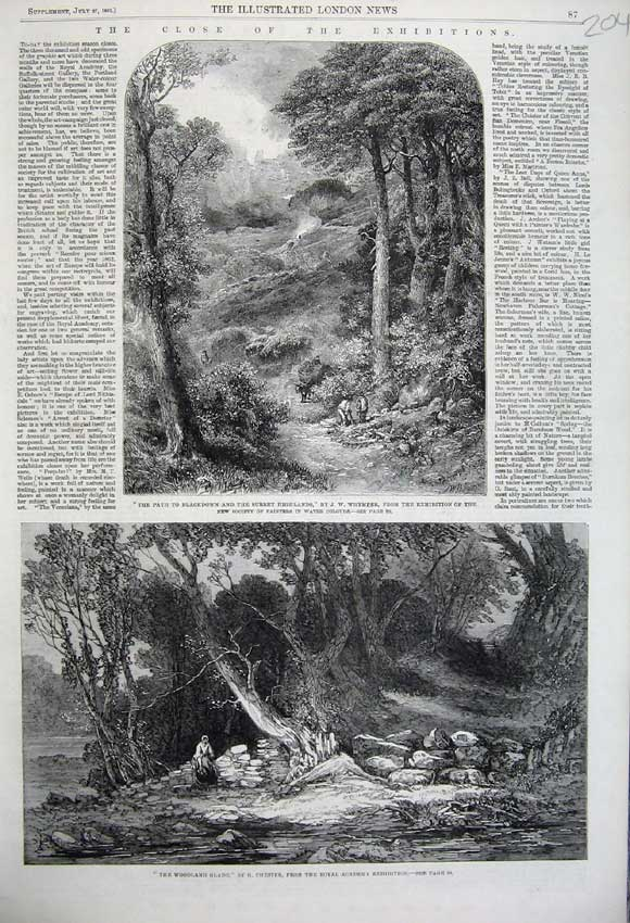 Print 1861 Blackdown Surrey Highlands Woodland Glade Trees 204N112 Old Original