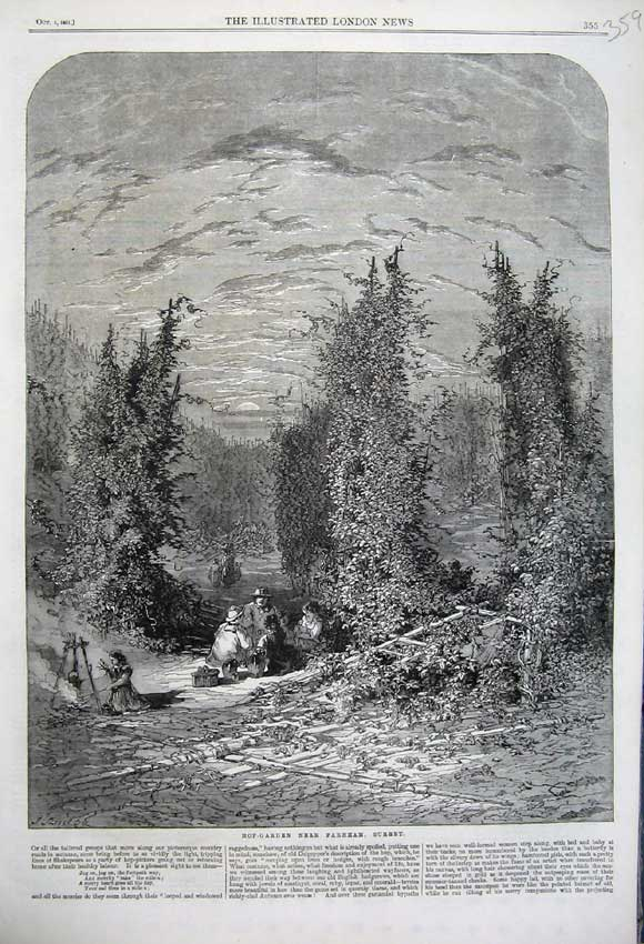 Print 1861 View Hop Garden Farnham Surrey England Country 359N112 Old Original