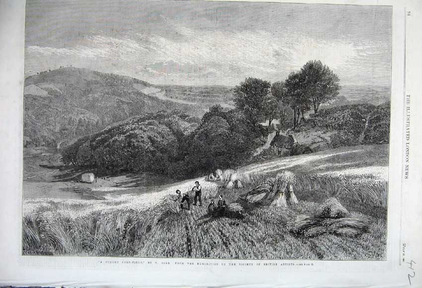 Print 1861 Surrey Corn Field Country Farmers Cole British 412N112 Old Original
