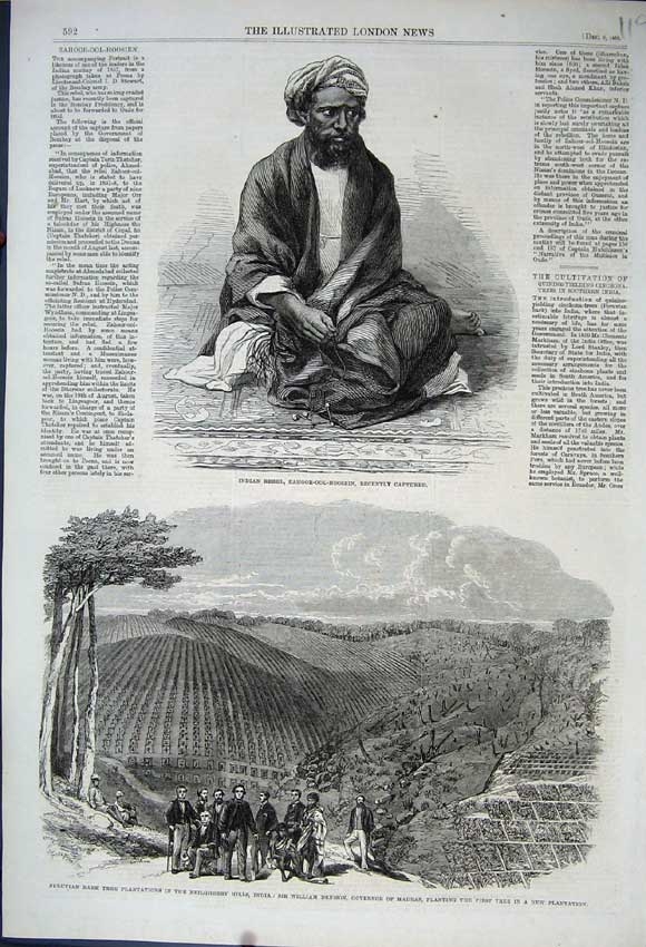 Print 1862 Indian Rebel Zahoor-Ool-Hoosein Bark Tree India 119N114 Old Original