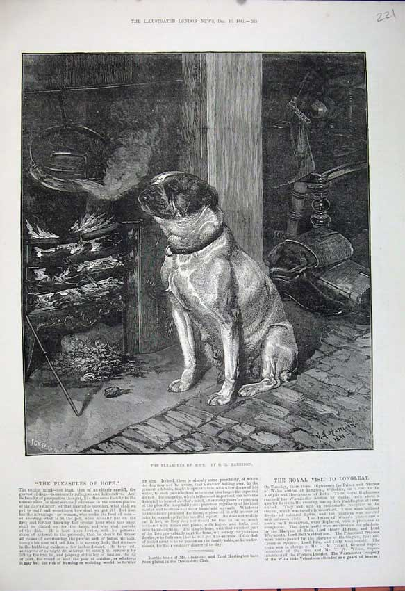 [Print 1881 Harrison Fine Art Dog Fire Side Cooking Pot House 221N150 Old Original]