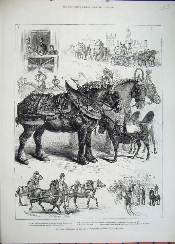 [Print *0229 1882 May-Day Procession Horses Newcastle-On-Tyne 223N151 Old Original]