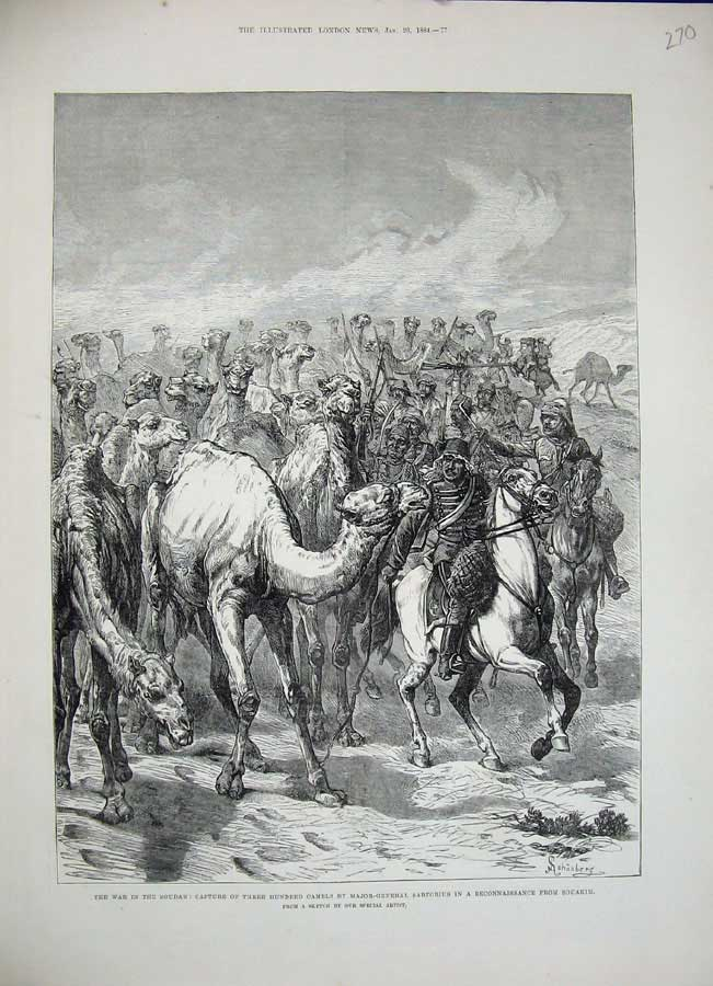[Print 1884 War Soudan Camels Major Sartorius Souakim Horses 270N155 Old Original]