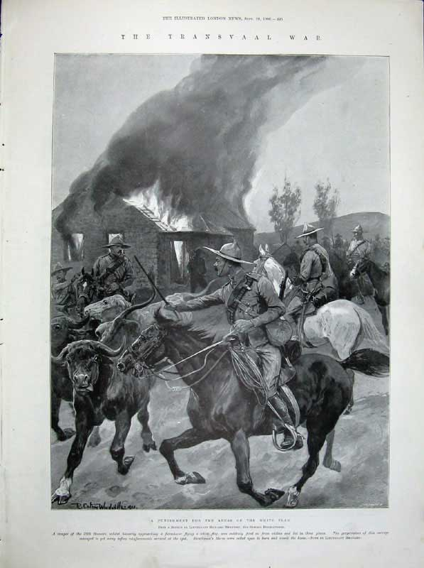 [Print 1900 Manchester Post Office Transvaal War Horses Fire 232Rn175 Old Original]