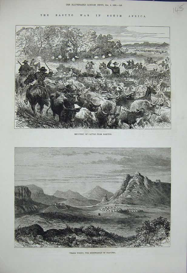 [Print 1880 Basuto War Africa Cattle Thaba Bosigo Masupha 145N308 Old Original]