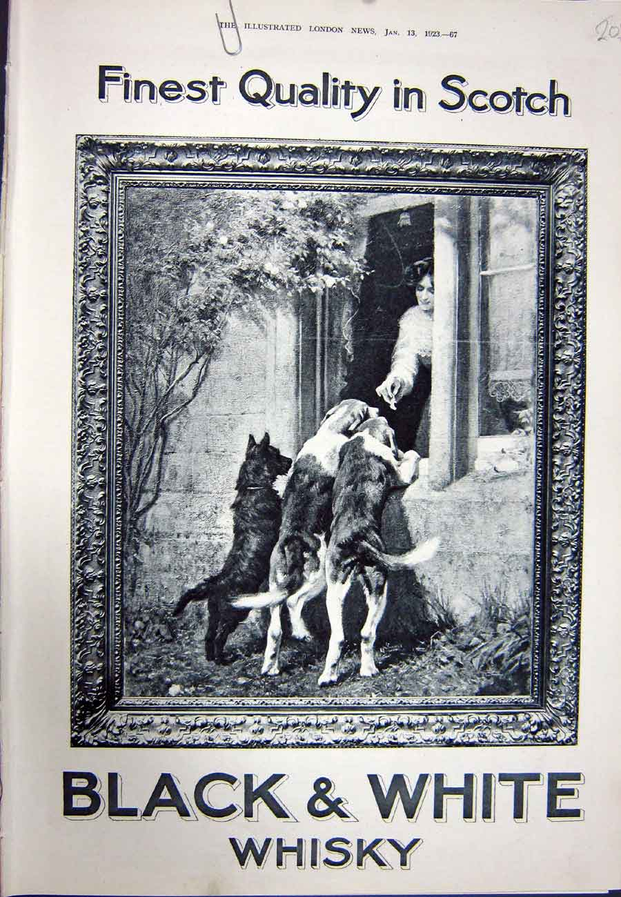 [Print 1923 Advertisement Black White Scotch Whisky Dogs 205N317 Old Original]