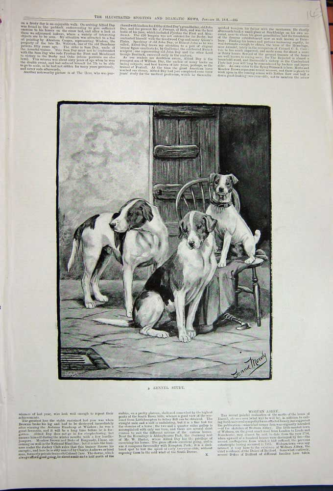 [Print 1891 Fannie Moody Fine Art Puppy Dogs Chair Pets 143N743 Old Original]