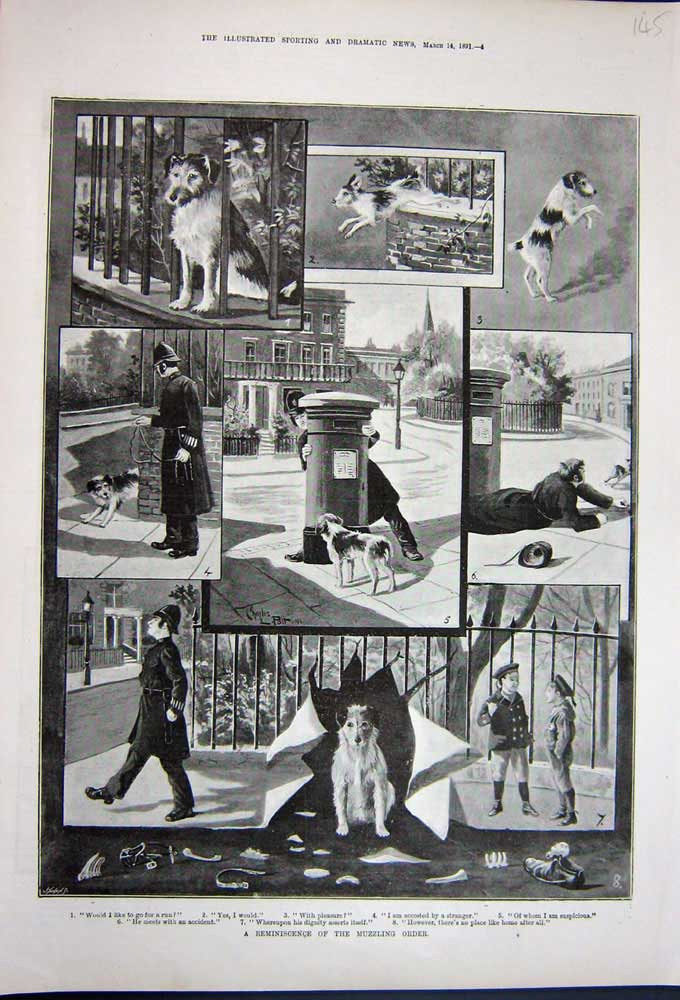 [Print 1891 Fine Art Puppy Dogs Street Policeman Children Boys 145N743 Old Original]