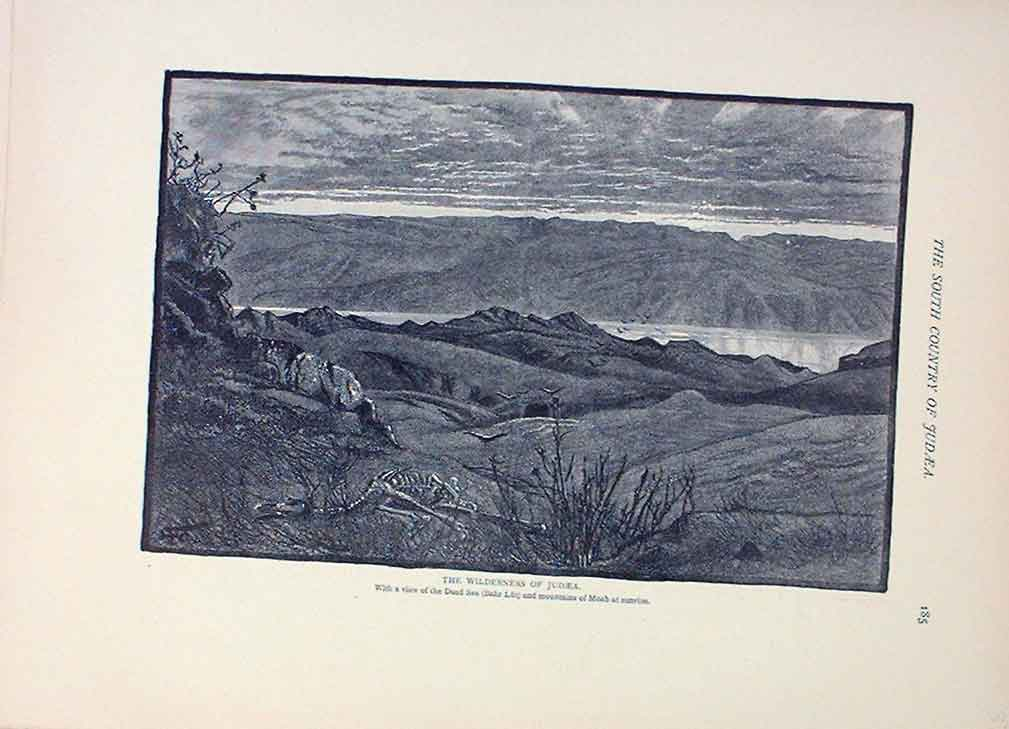 [Print The Wildernessjudea 1883 Palestine Sinai Egypt 375221 Old Original]