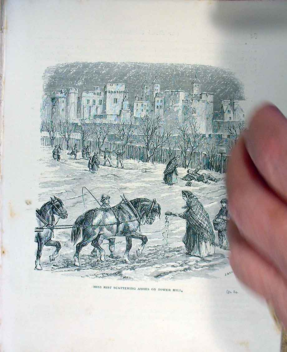 [Print Scattering Ashes S Horse C1880 845251 Old Original]
