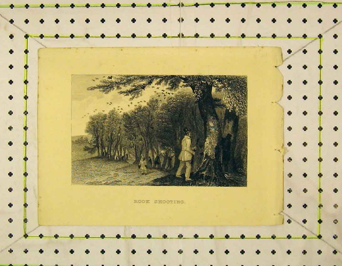 Print C1845 Rook Shooting Birds Trees Country 103B324 Old Original
