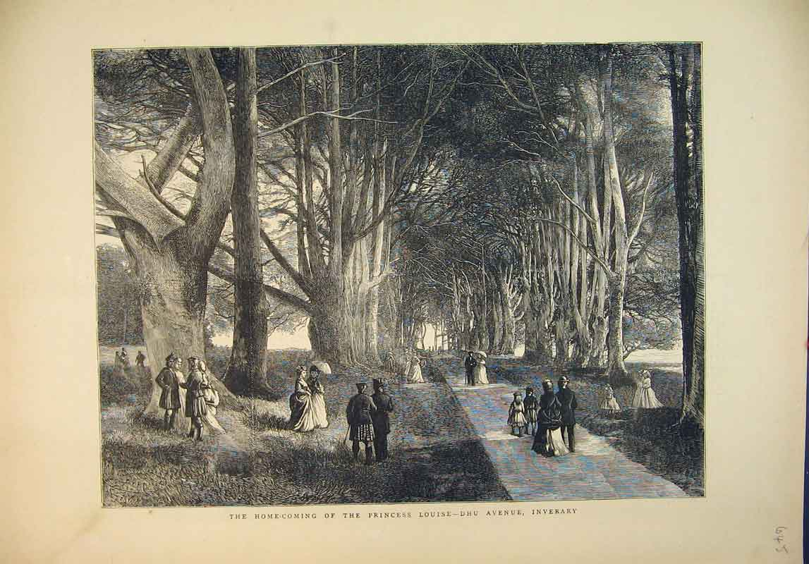 Print 1871 Scene Princess Louise Dhu Avenue Inverary Country 645B345 Old Original