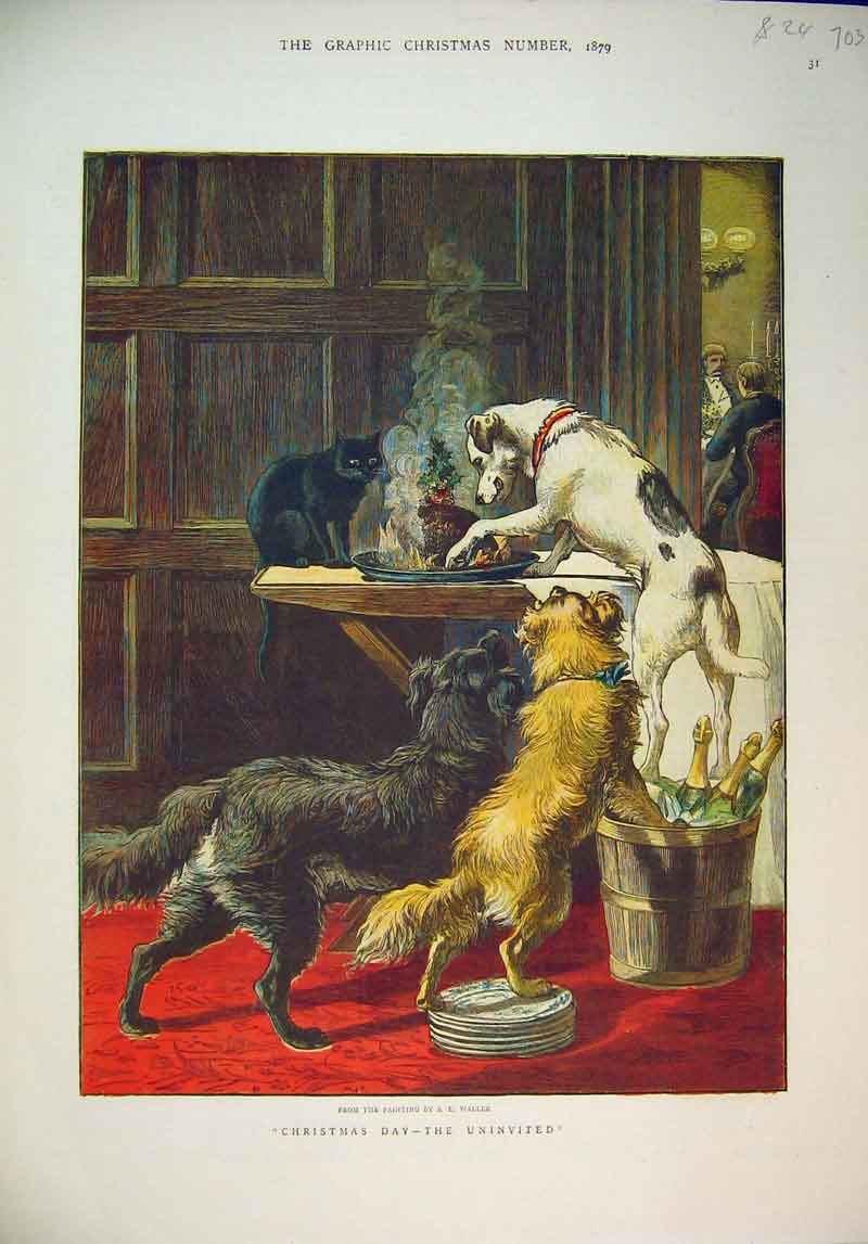 Print 1879 Christmas Day Pudding Dogs Cat Mischief Colour 703B345 Old Original