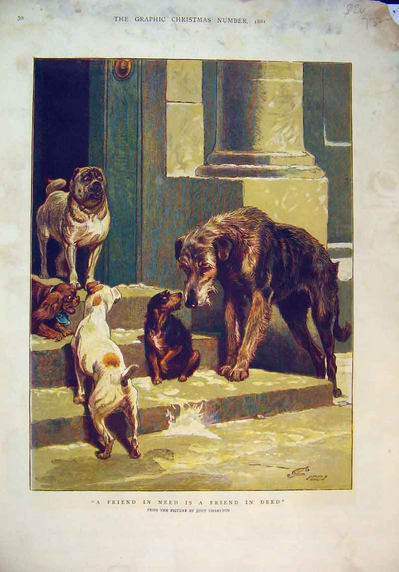 Print Christmas 1881 Breeds Dogs House Doorstep Charlton 732B345 Old Original
