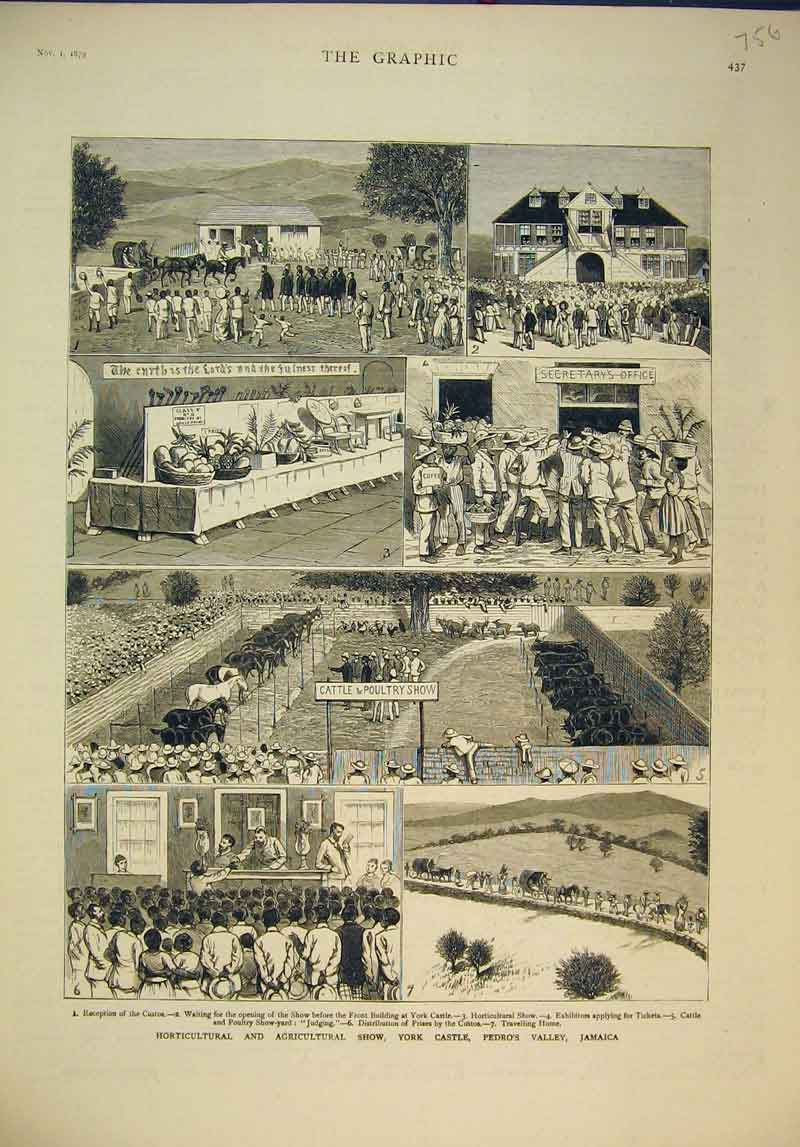 Print 1879 Horticultural Agricultural Show York Pedro Jamaica 756B345 Old Original