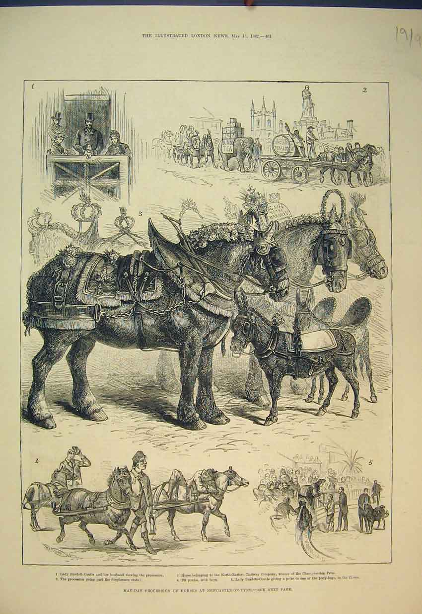 Print *0022 1882 May-Day Procession Horses Newcastle-On-Tyne 191B351 Old Original
