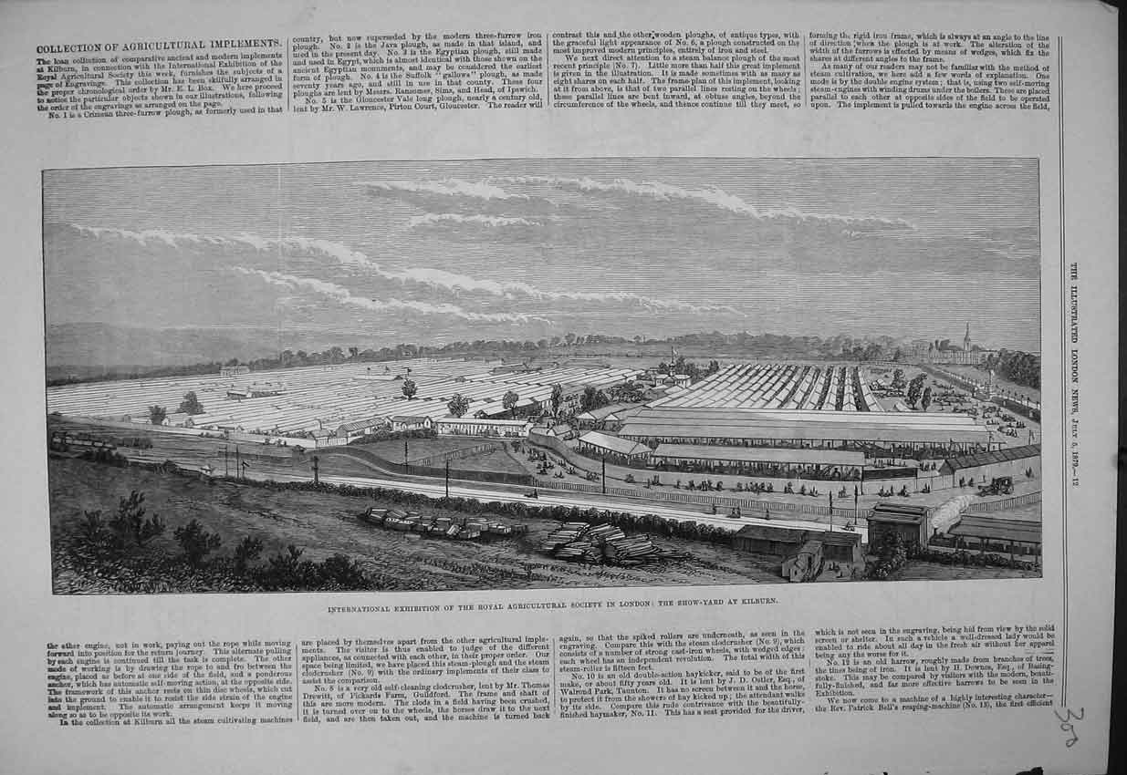 Print 1879 Show Yard Kilburn Agricultural Society London View 300B352 Old Original