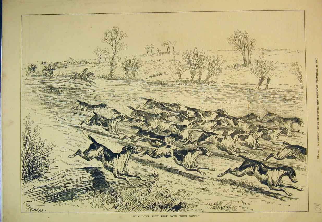 Print 1877 Country Scene Fox Hunting Horses Hounds Racing 401B352 Old Original
