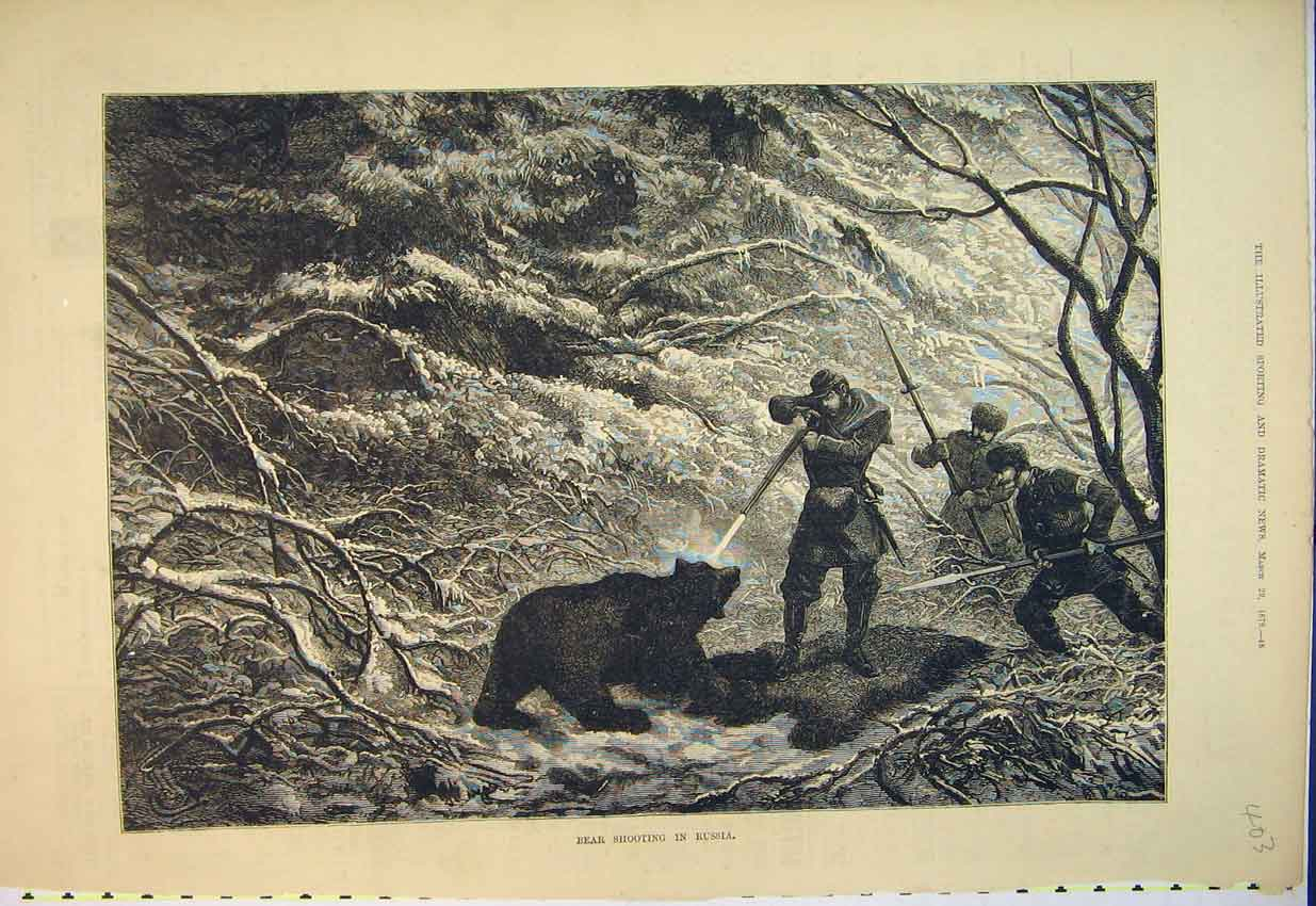 Print 1879 Scene Bear Shooting Russia Man Gun Art 403B352 Old Original