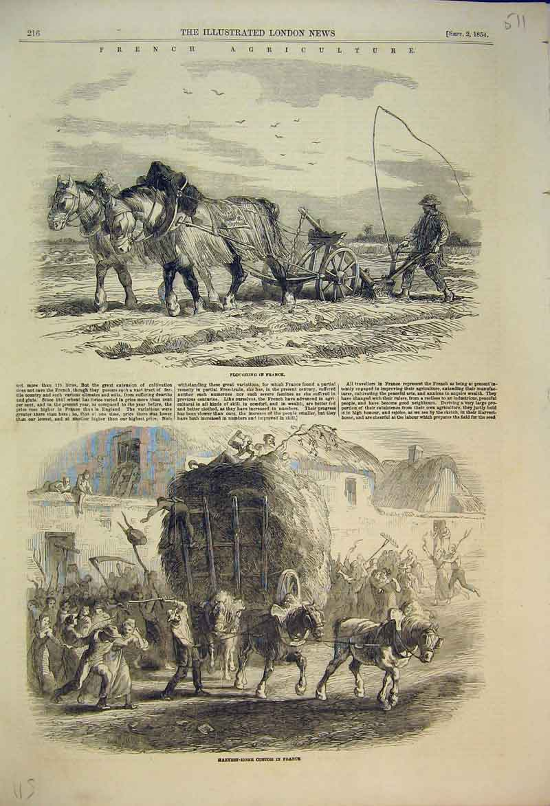 Print 1854 French Agriculture Ploughing Harvest Shire Horse 511B353 Old Original