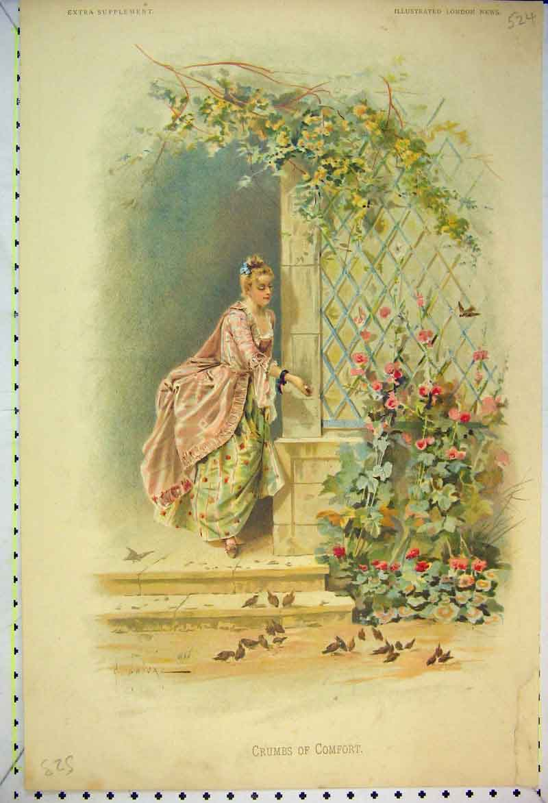 Print Colour Beautiful Woman Feeding Birds Flowers 524B353 Old Original