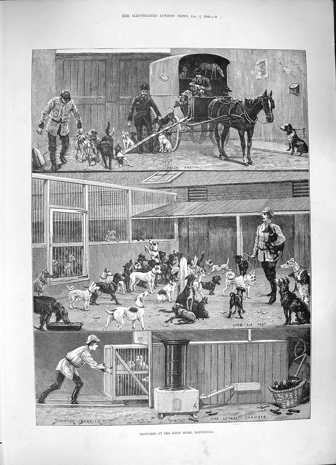 [Print 1886 Dogs Home Battersea Lethal Chamber London Fine Art 009P188 Old Original]