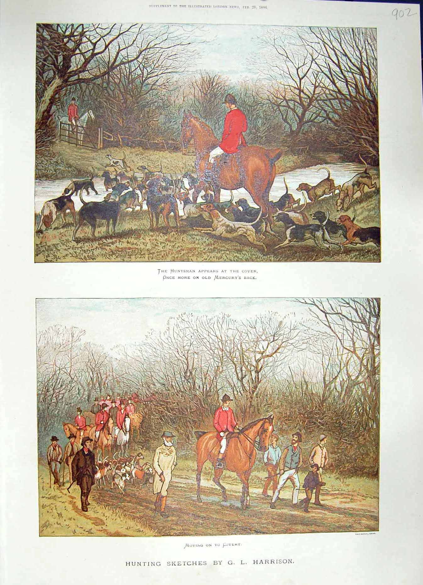 [Print 1886 Colour Huntsman Horses Hunting Hounds Dogs 902P188 Old Original]