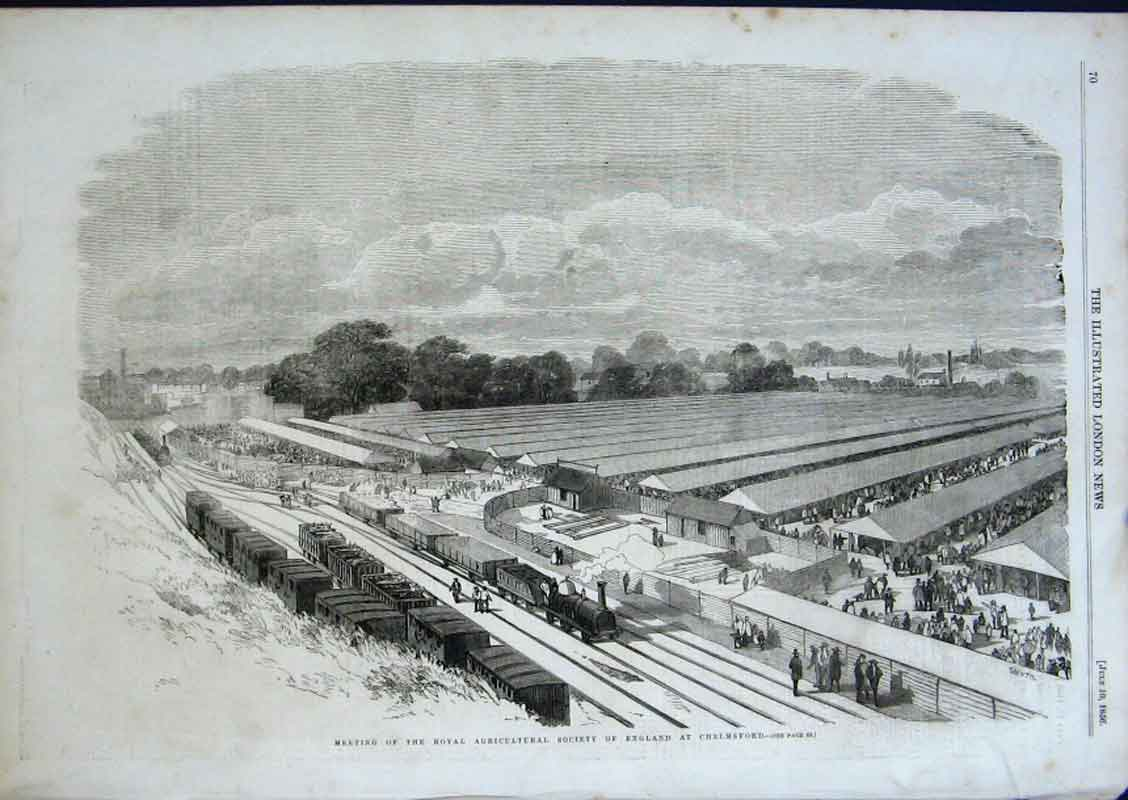 Print Agricultural Show At Chelmsford Essex 1856 70Aaa0 Old Original