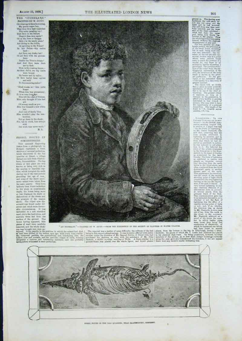 Print Iterant Tambourine Player 1856 Fine Art 03Aaa0 Old Original