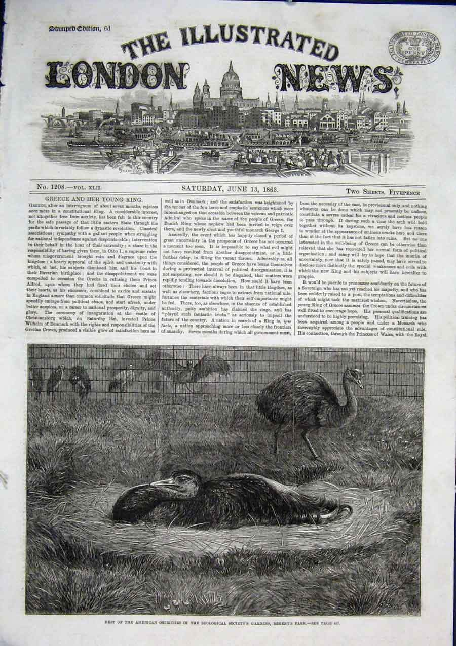 Print American Ostriches At Regenyts Park Zoo 1863 30Aaa0 Old Original