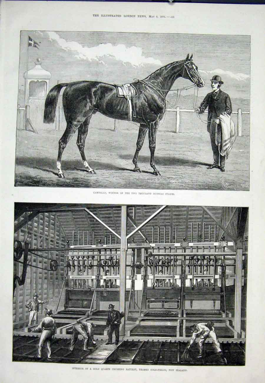 Print Camballo Guineas Race Horse Gthames New Zealand 41Aaa0 Old Original