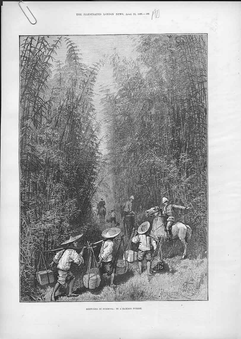 Print Bamboo Forest Fromosa 1890 Bankimsing 96Aaaa0 Old Original