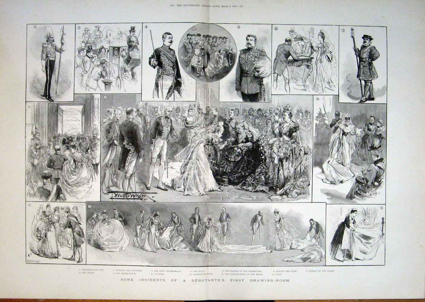 Print Debutante Drawing Room 1893 75Taaa0 Old Original