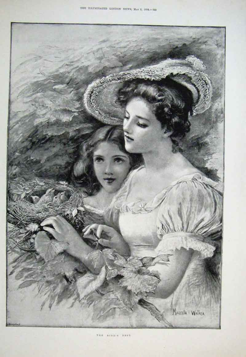 Print Birds Nest By Walker 1894 Fine Art Mother & D 44Aaa0 Old Original