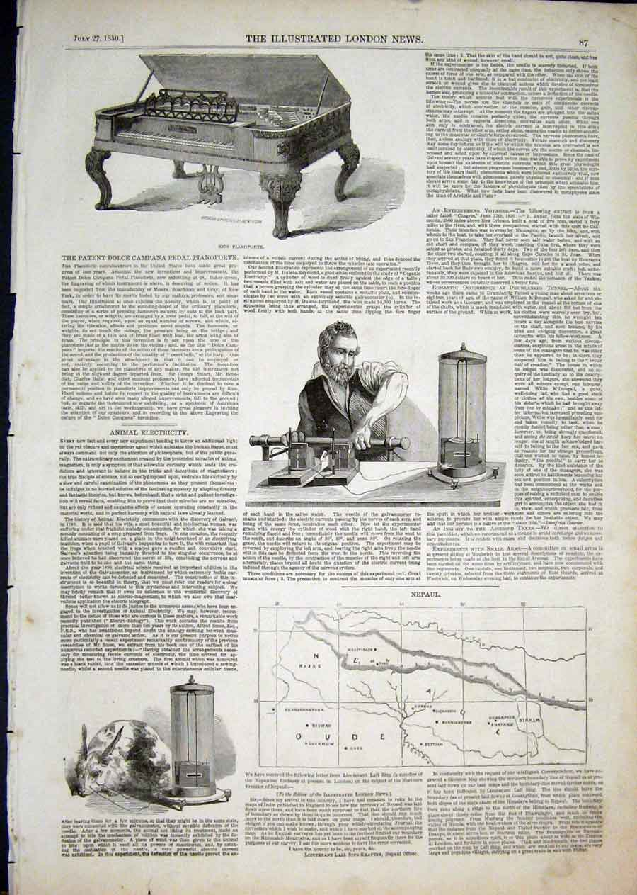 Print Dolce Pianoforte Animal Electricity Nepaul Map 1850 87Aaa1 Old Original
