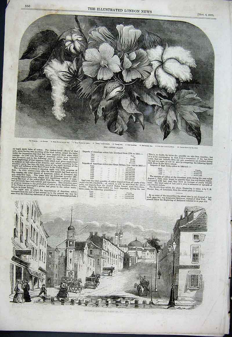 Print Baltimore Street Maryland In 1856 Cotton Plant 50Aaa1 Old Original