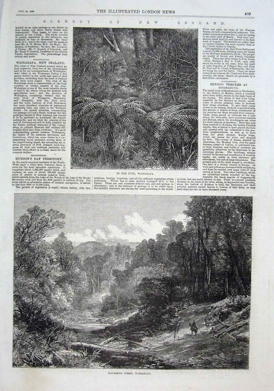 Print Kauminga Creek Wairarapa New Zealand 1869 09Aaa1 Old Original