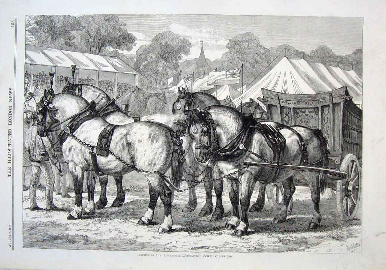 Print Horses At Lincolnshire Agricultural Show Sealford 1870 53Aaa1 Old Original
