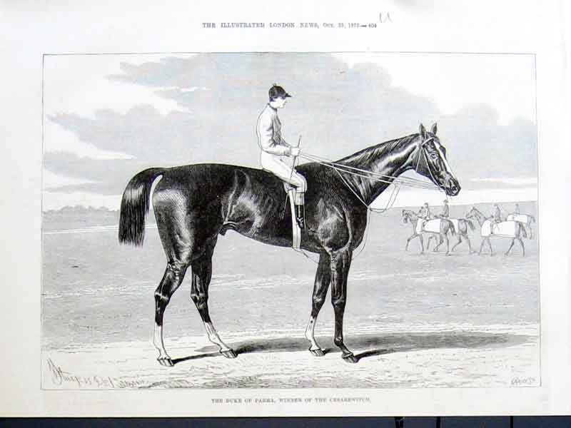 Print Duke Parma Race Horse Winner Cesarewitch 1875 04Uaaa1 Old Original