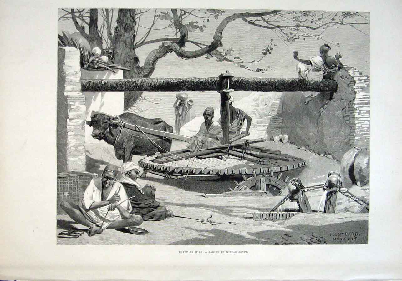 Print A Sakieh In Middlke Egypt 1882 Water Pump 20Aaa1 Old Original