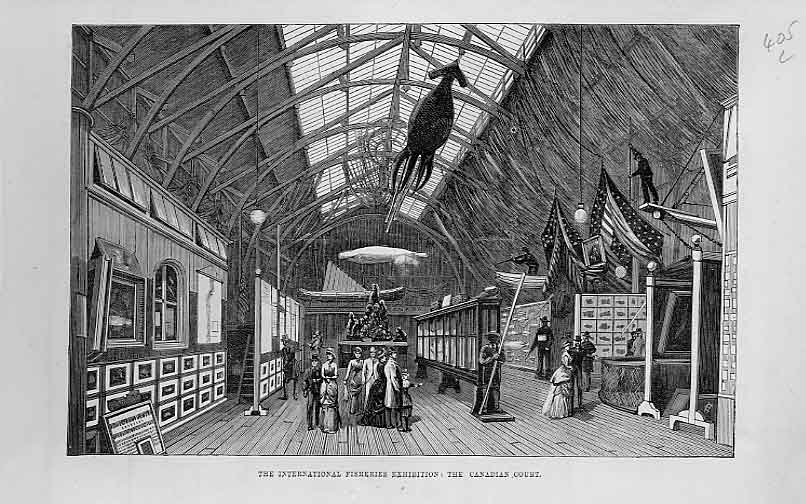 Print Canadian Court International Fisheries Exhibition 1883 05Laaa1 Old Original