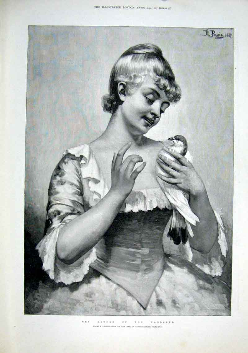 Print A Dove 1889 The Return The Wanderer Fine A 37Aaa1 Old Original