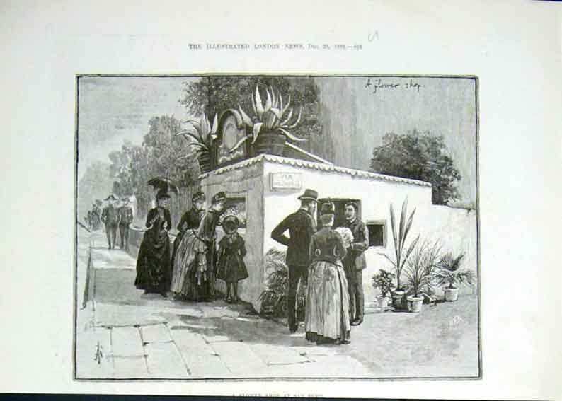 Print Flower Show San Remo 1889 16Uaaa1 Old Original