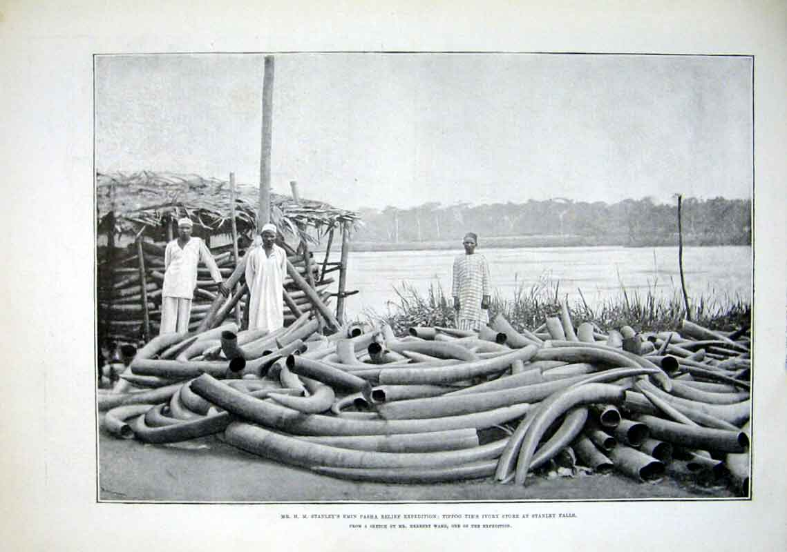 Print Tippoo Tib'S Ivory Store At Stanley Falls 1889 Africa 17Aaa1 Old Original